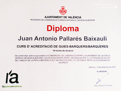 Diploma Juan Pallares.jpg
