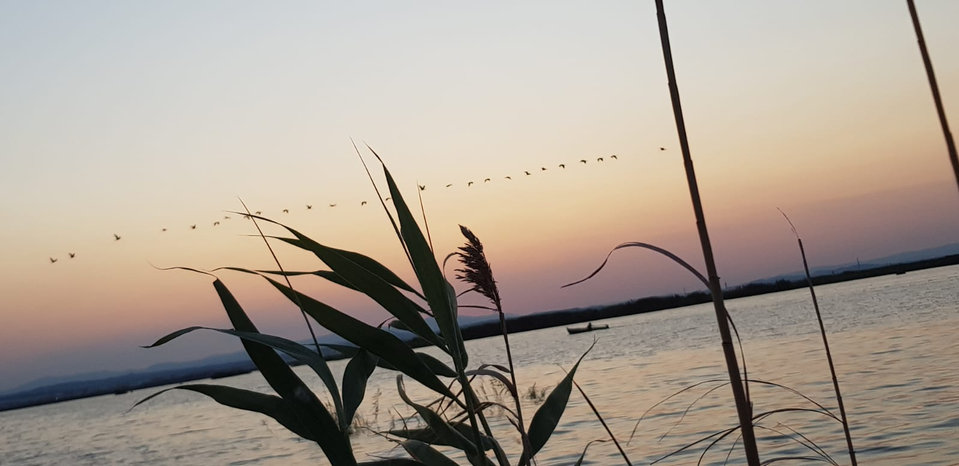 Atardecer Lago La Albufera.jpg