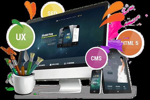 Basic Website Development - $600 ($300 deposit)