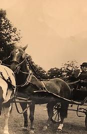 John Seear carriage driving tandem with Collar Harness
