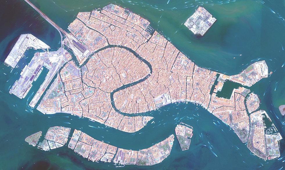 Venecia es un pez