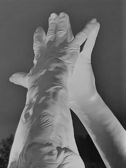 Pareja de manos NÚMERO 6