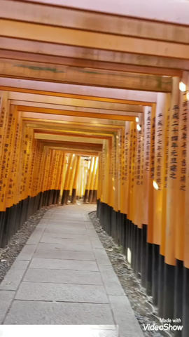 伏見稲荷大社@京都#Fushimi#Inari#Taisha