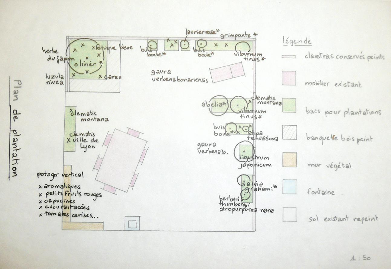 plan de plantation terrasse avec bac