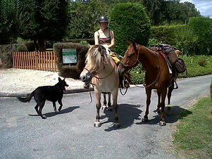 randonnée, balade, promenade à cheval périgord noir, montignac, vallée vézère