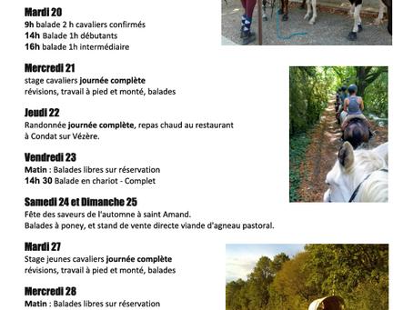 Programme des vacances de la Toussaint 2020