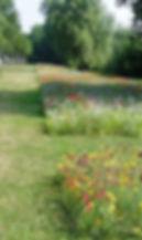 entretien différencié jarchère fleurie jardin senonches 28