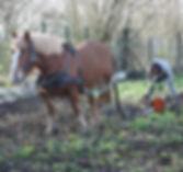 debardage à cheval dordogne