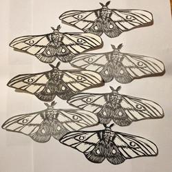 Emperor Gum Linocut moth prints for Hilary Lorenz's Moth Migration Project .jpg
