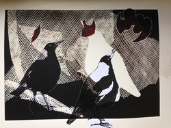 This morning's magpies combine collage,w