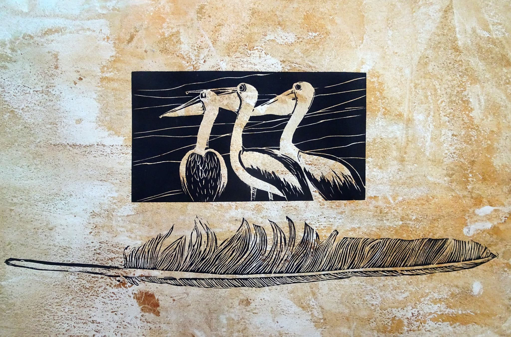 Pelican and feather