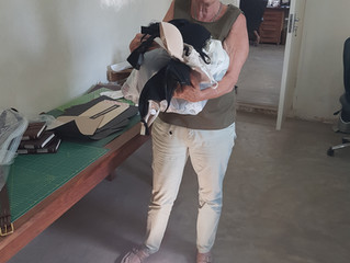 Die gespendeten BHs für Project Luangwa The donated bras for Project Luangwa