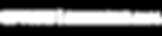 Logo Space bianco.png