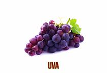 Uva-1024x698.png