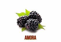 amora-1024x698.png