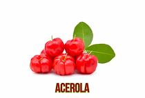 Acerola-1024x698.png