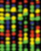 gene-sequence.jpg