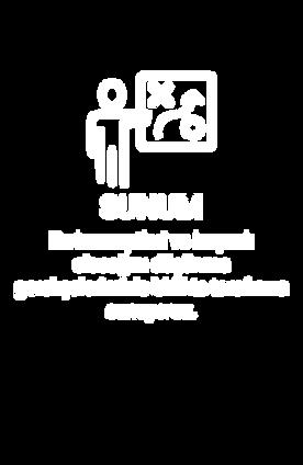 sunum.png