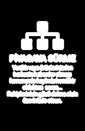 piyasaya_sürme.png