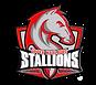 upper marlboro stallions.png