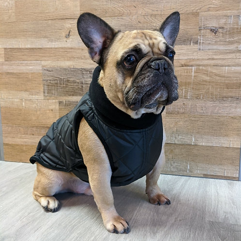 Dogissimo Monaco Coat for French Bulldogs Black
