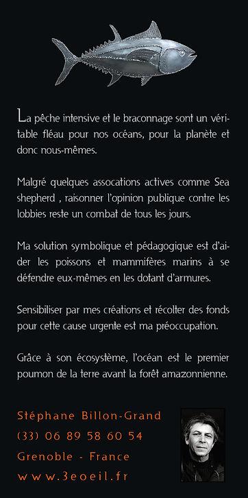 Plaquette P2_ 11x22.jpg