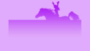 unbridled spirit web background.png