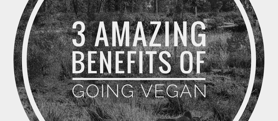 3 amazing benefits of going vegan