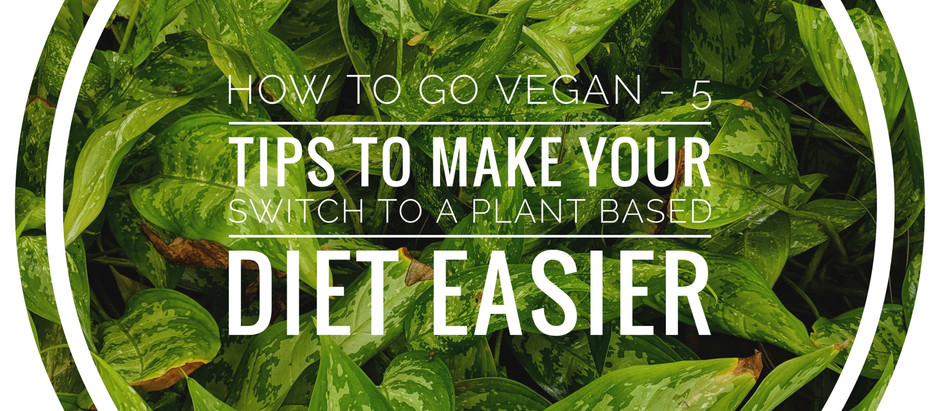 How to go vegan - 5 tips to make your switch to a plant based diet easier