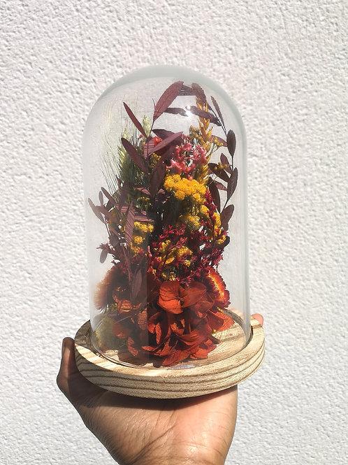 Composition unique de Fleurs séchées rouges sous cloche - Or Végétal - Fleuriste pau
