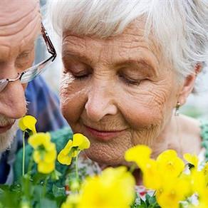 Seniors : le pouvoir des fleurs.