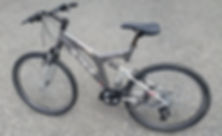 Bicycle Model 1