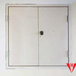Shaft Door
