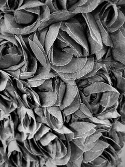 Chiffon Roses Black