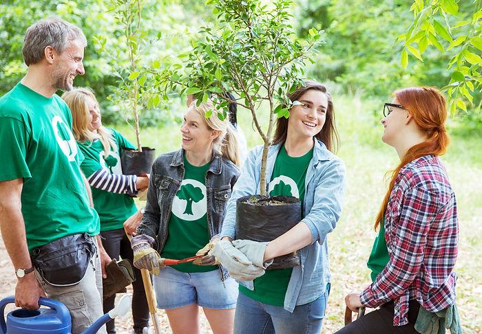 Plantando árboles