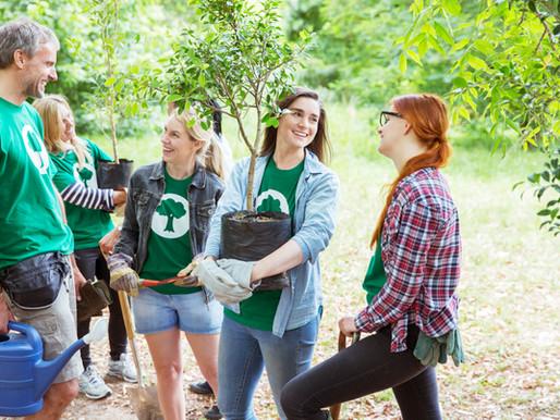 Pozvánka na společné sázení stromů a keřů