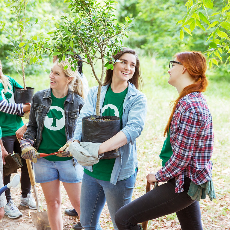 Plant a tree with us