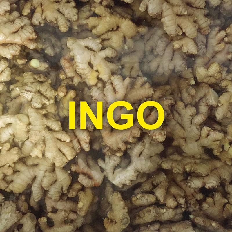 Ingo ist Ingwersaft
