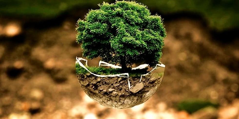 World Environment Day @ Sambandh