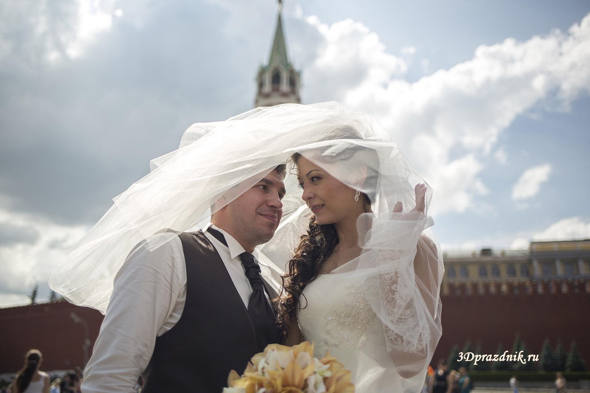 Владимир и Алла. Свадебная фата.