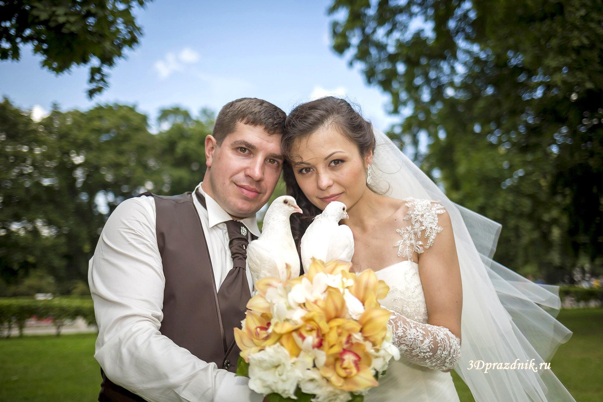 Владимир и Алла. Свадебные голуби