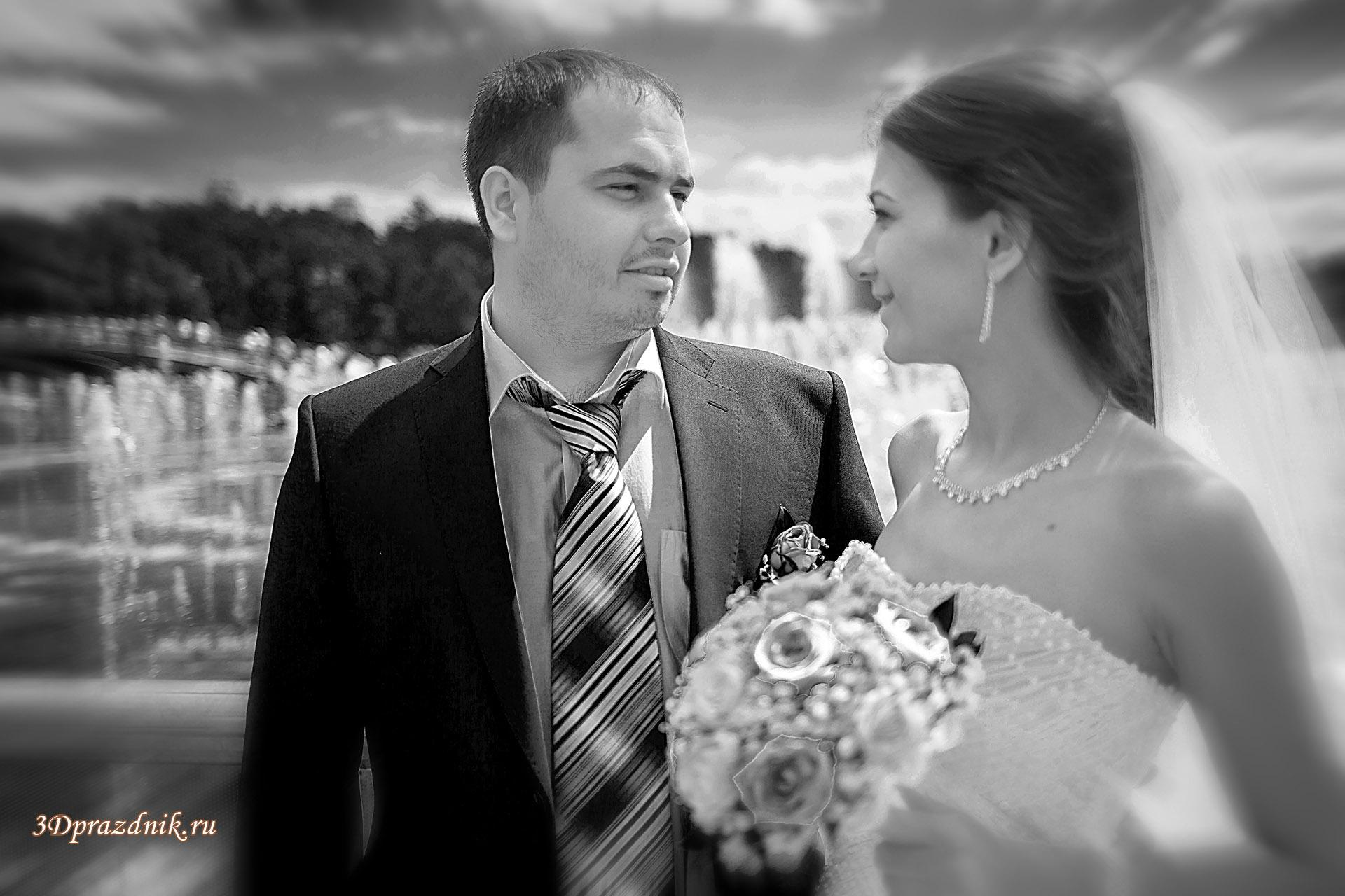 Сергей и Ольга. Фонтан Царицыно.