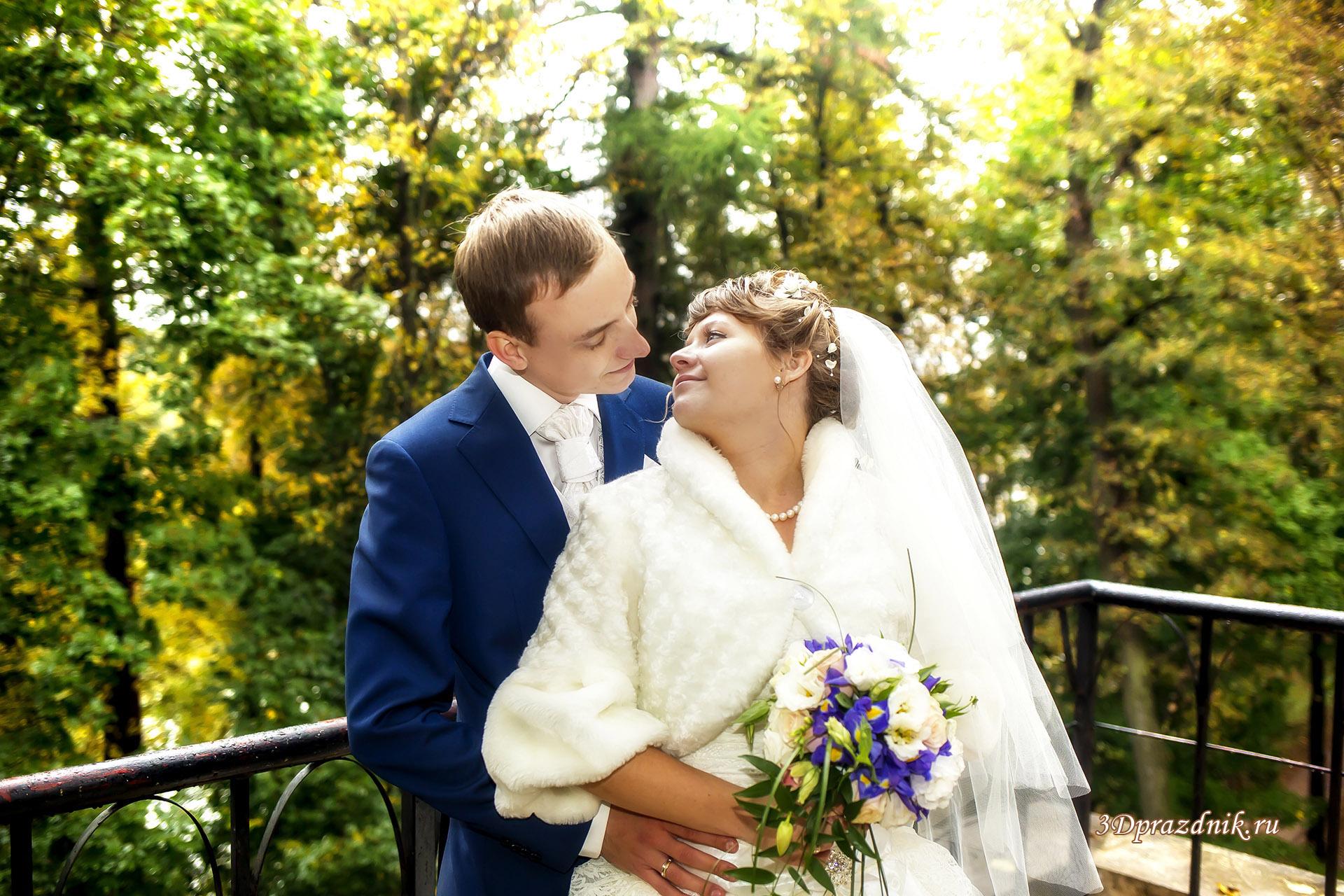 Жених и невеста. Осенний день