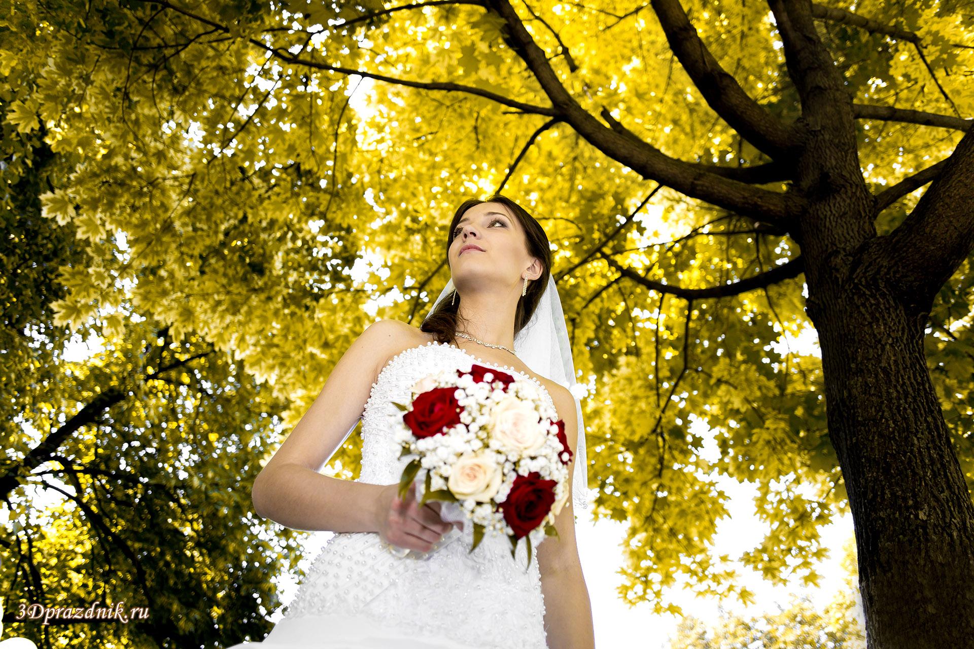 Невеста Ольга. Из лета в осень