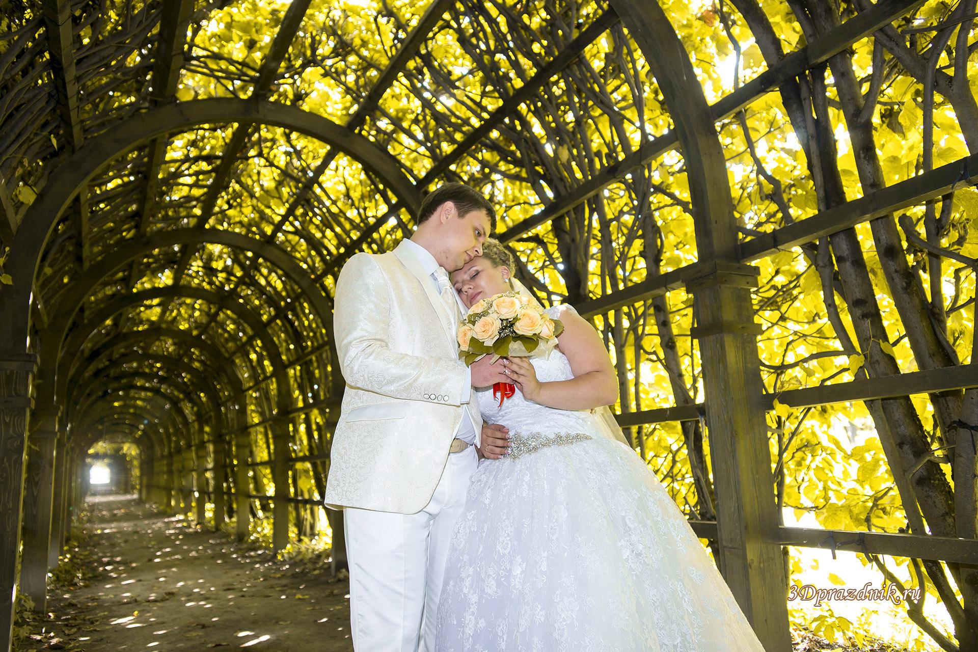 Свадебная арка. Парк Архангельское