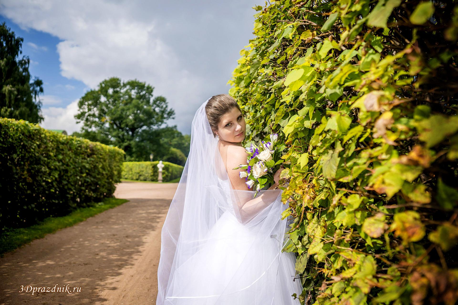 Невеста Ирина. Между летом и осенью