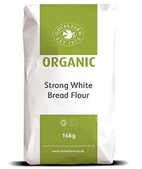 Organic white bread flour (100g)