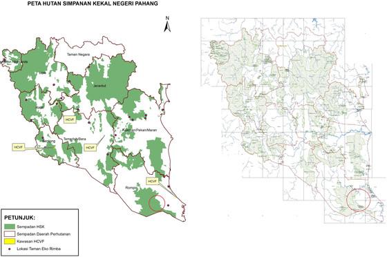 Taman Negeri Endau-Rompin: A Quiet 6000-ha Excision