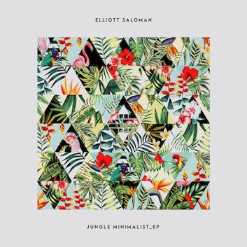 Elliott Saloman - Jungle Minimalist EP - IN:DEEP / IN:DEEP041
