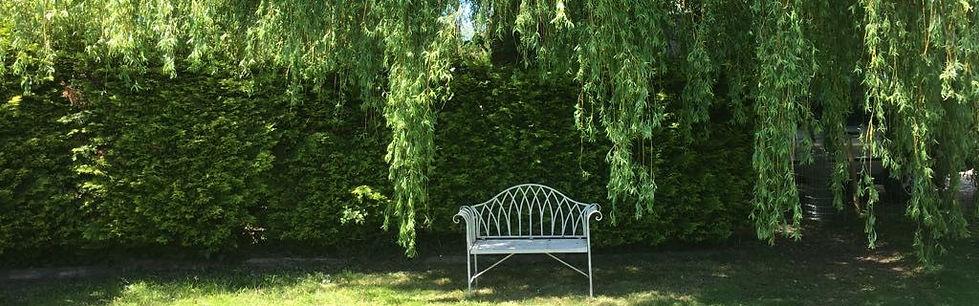 willow house.jpg